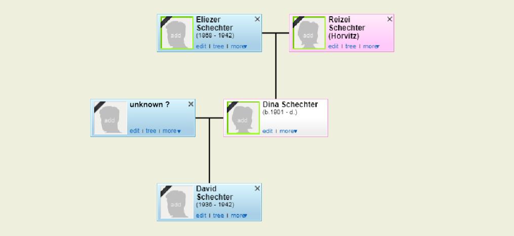 עץ משפחת דינה שכטר