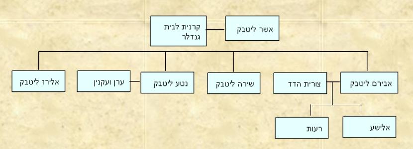 עץ משפחת ליטבק אלטשולר נויברגר 2