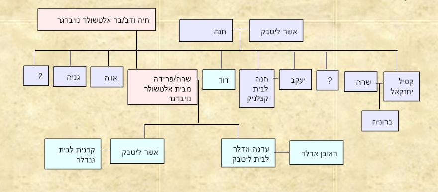 עץ משפחת ליטבק אלטשולר נויברגר