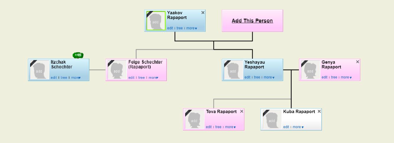 עץ משפחת רפפורט