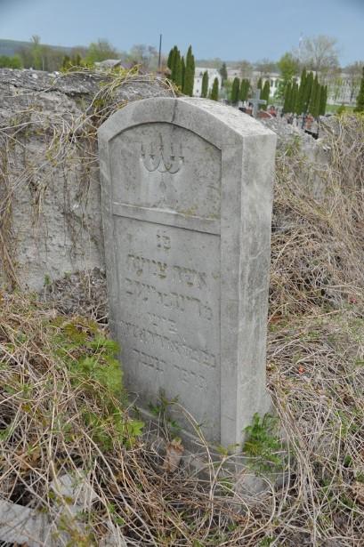 מצבה מס 32 דינה ארדסטר בת יעקב פיש Old Jewish Cemetery Chortkiv
