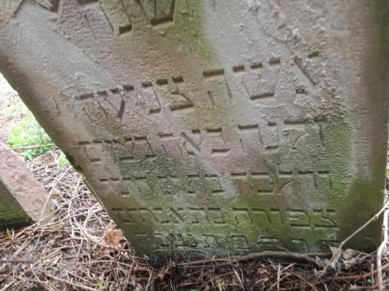 מצבה מס 74 ציפורה בת אברהם 1922 Old Jewish Cemetery Chortkiv